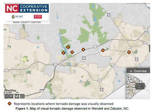 Image of tornado activity chart