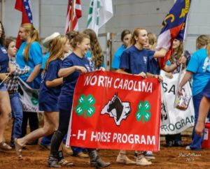 Cover photo for NC 4-H Horse Program Events Update