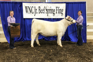 Cover photo for Western NC Spring Fling